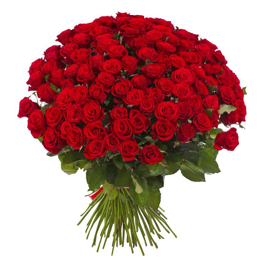 Super Fiori Amore | Sedurre o conquistare una donna | fiori, bouquets  BI36