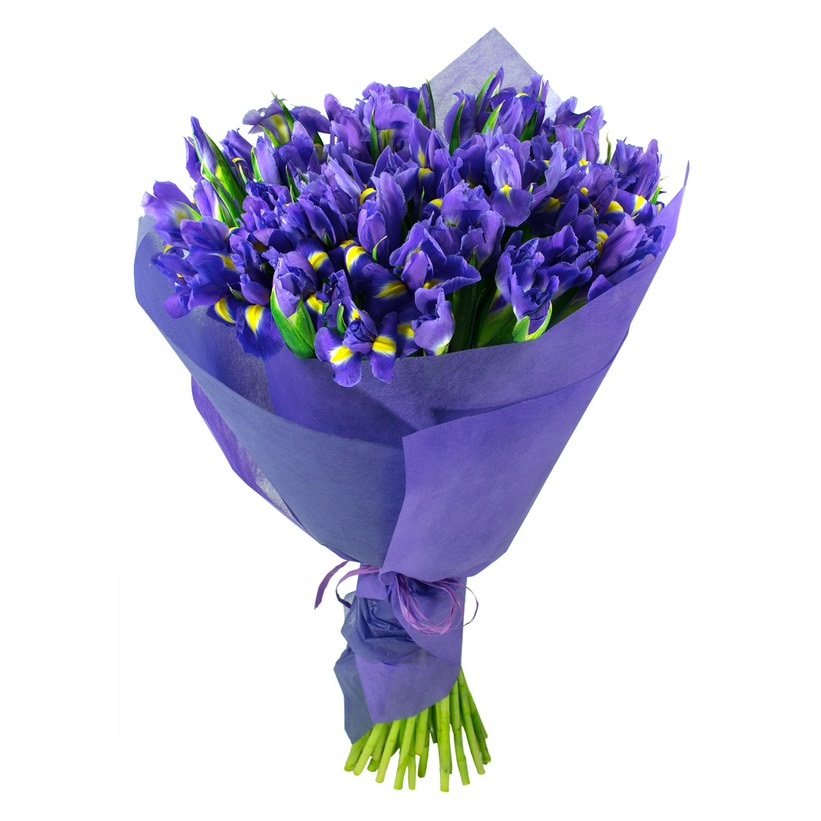 Mazzo Di Fiori Iris.Iris Blue And Yellow Tulips Deliver Bouquets To Home