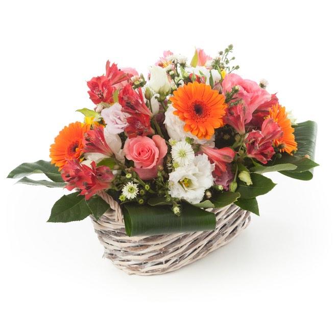 Vendita e consegna fiori piante ed omaggi floreali online for Fiori gerbere