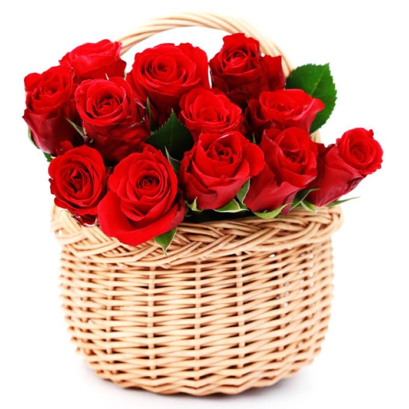 Anniversario Matrimonio Quante Rose.Rose Rosse San Valentino Quante Rose Si Regalano