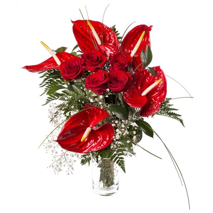 Mazzo Di Fiori Anniversario.Rose Rosse Ed Anthurium Rosso Consegna Mazzi Di Fiori A Domicilio