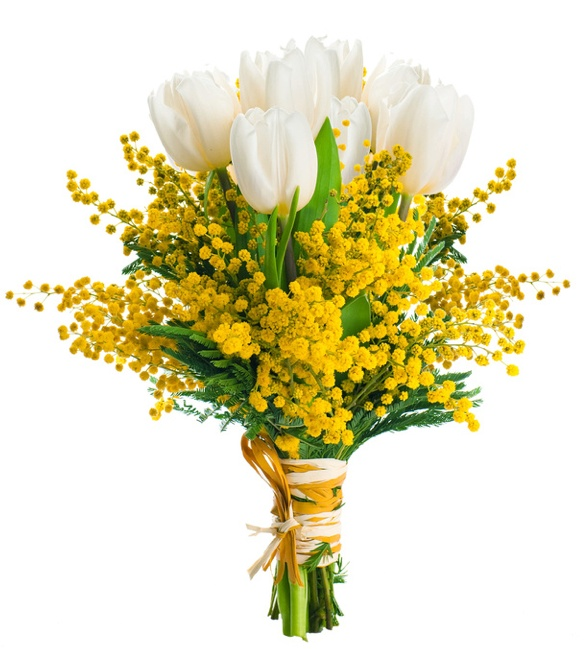 Mazzo Di Fiori Mimosa.White Tulips And Mimosas Deliver Mixed Flowers To Home